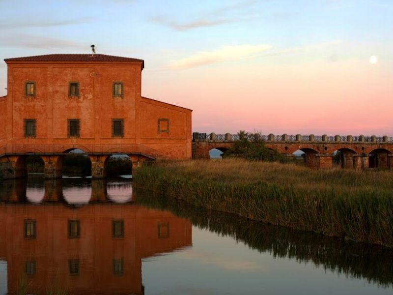 appartamenti a castiglione della pescaia in affitto - museo casa rossa